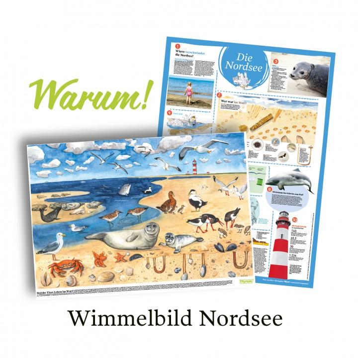 Poster Plakat Nordsee Tiere Wimmelbild Tierposter Meer Nordsee-Poster Lebensraum Schulposter Lernposter Lehrmaterial Schulmaterial Lernmaterial Kinder