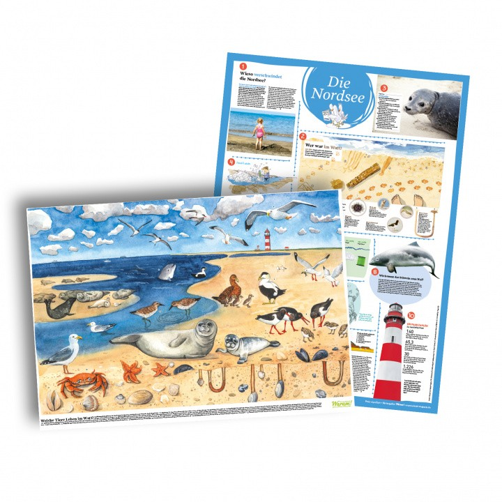 Poster Plakat Nordsee Tiere Wimmelbild