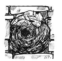Illustration eines Kugelnests vom Zaunkönig