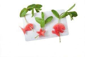 Lustige Tiere aus Wassermelonen für Kinder-Bowle