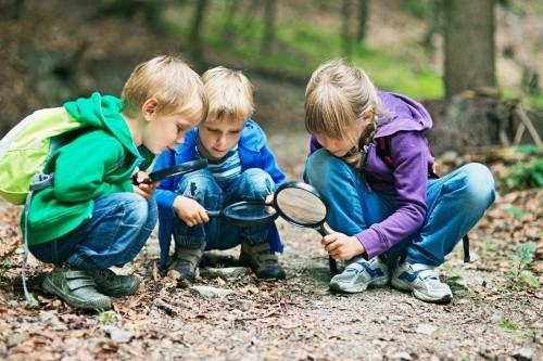 Kinder forschen im Wald mit Lupe