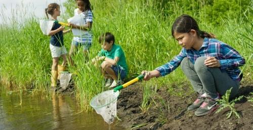Kinder keschern am Teich