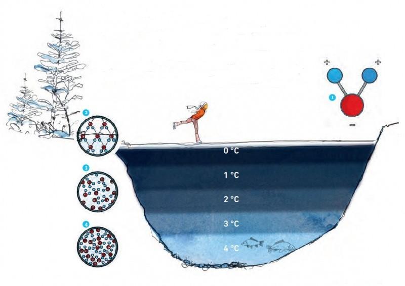 Illustration Wärmeschichten Wasser