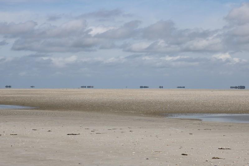 Blick auf die Halligen vom Norderoogsand