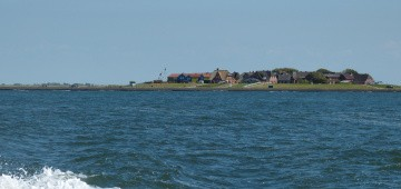 Hallig Hooge in der Nordsee