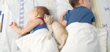 Zwei Kinder und eine Katze schlafen im Bett