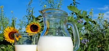 Glas und Karaffe mit Milch auf einer Decke im Feld