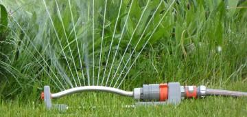 Rasensprenger wässert den Garten