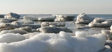 Eisschollen auf dem Meer