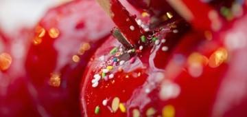 Rote, zuckrige Liebesäpfel