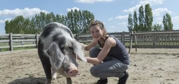 Jugendliche kniet neben Schwein